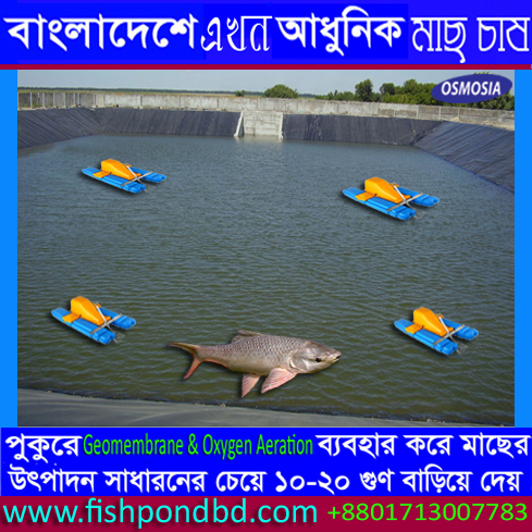 Fish Farming Oxygen Jet Aerator Suppliers Price in Bangladesh, Fish Farming Oxygen Paddle Aerator Suppliers Price in Bangladesh, Fish Pond Oxygen Paddle Aerator Suppliers Price in Bangladesh, Fish Pond Oxygen Paddle Wheel Aerator Suppliers Price in Bangladesh, Bangladesh Fish Pond Oxygen Paddle Wheel Aerator Suppliers Price, Bangladesh Fish Pond Oxygen Paddle Wheel Aerator Suppliers, Bangladesh Fish Pond Oxygen Paddle Wheel Aerator Suppliers