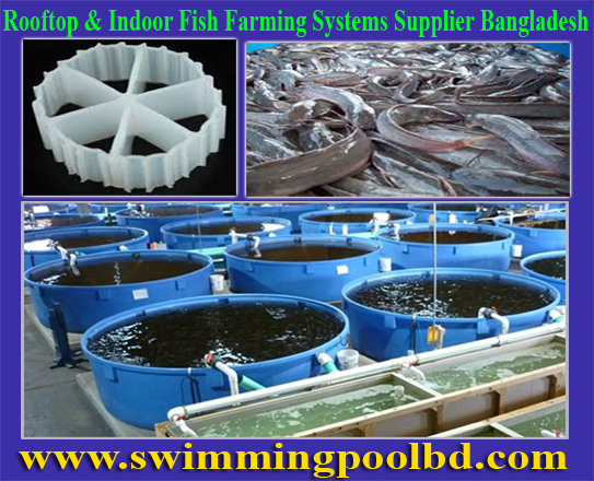 Swimming Pool Equipment Bio Filter Media In Bangladesh